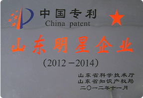 Chinese Patent Shandong Star Enterprise
