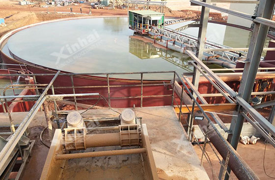Guinea 6000tpd gold processing plant