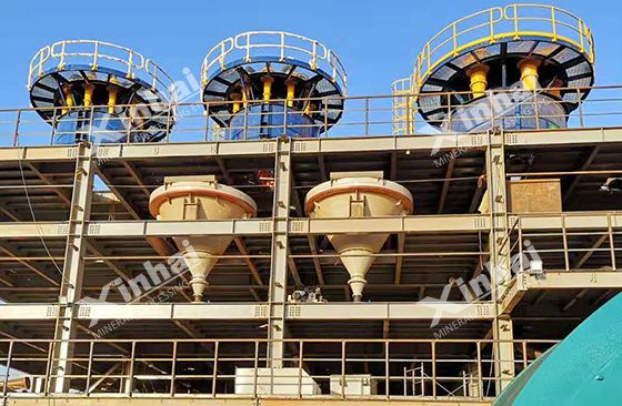 Guinea 15000TPD gold ore processing plant